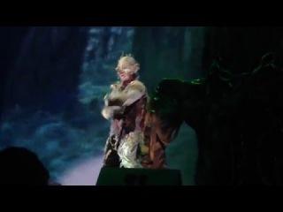Андрей Сумцов. Песня Лешего. Мюзикл