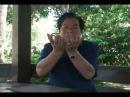 Мантэк Чиа о Высших даосский практиках Кань и Ли
