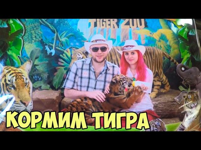 Vlog Тайланд 7 - Зоопарк (Кормим тигрёнка,Розовые свинюшки)