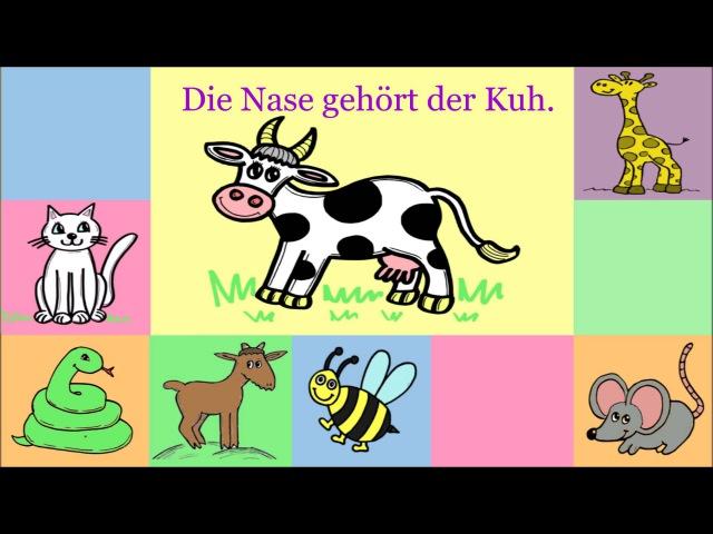 Deutsch lernen: Verb gehören Dativ im Femininum (für Kinder und Anfänger)