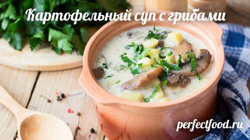 Картофельник - картофельный суп с грибами
