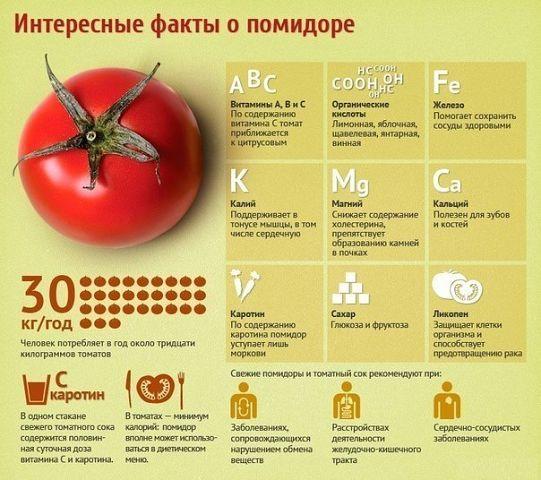 СОЛЯНАЯ ПЕЩЕРА - Центр здоровья
