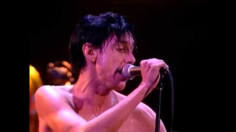 Iggy Pop - Cry For Love - 11/14/1986 - Ritz (Official)