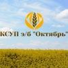 """КСУП """"э/б """"Октябрь"""""""