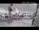Массовый расстрел в Сирии (18+)