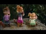 Элвин и бурундуки Поют песню Леди Гаги ) - 320x240