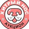 Аукцион «Хитрый Нос» - помощь ВСЕМ животным