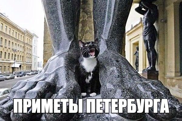 Всё-всё о Санкт-Петербурге. Места, события, лайфхаки, новости, искусство и жизнь города – в  Питере