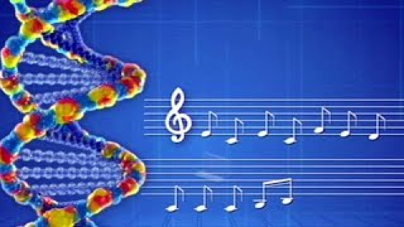 Закон семи нот. Музыка Крови и ДНК. Пётр Гаряев