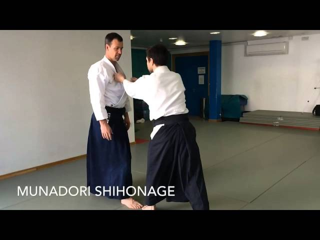 1st Kyu Aikido Syllabus
