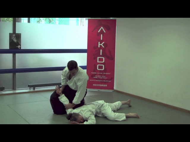 5th Kyu Aikido Syllabus