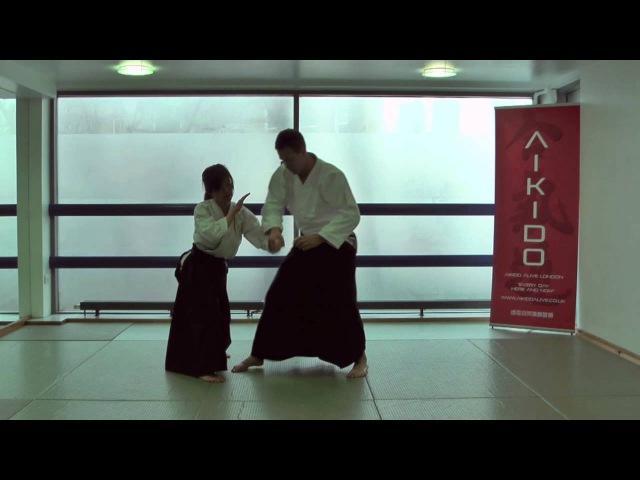 3rd Kyu Aikido Syllabus