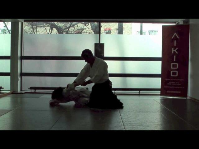2nd Kyu Aikido Syllabus