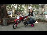 Покатушки от Инны GearBest на бензиновом мини-мотоцикле для детей LANGCHUANG 49cc Apollo