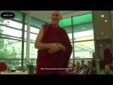 Барри Керзин - Буддийское сострадание к собаке