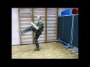 Комплекс приемов рукопашного боя без оружия