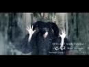 ASAGI 「Seventh Sense 屍の王者 アンプサイ」 YouTube Ver