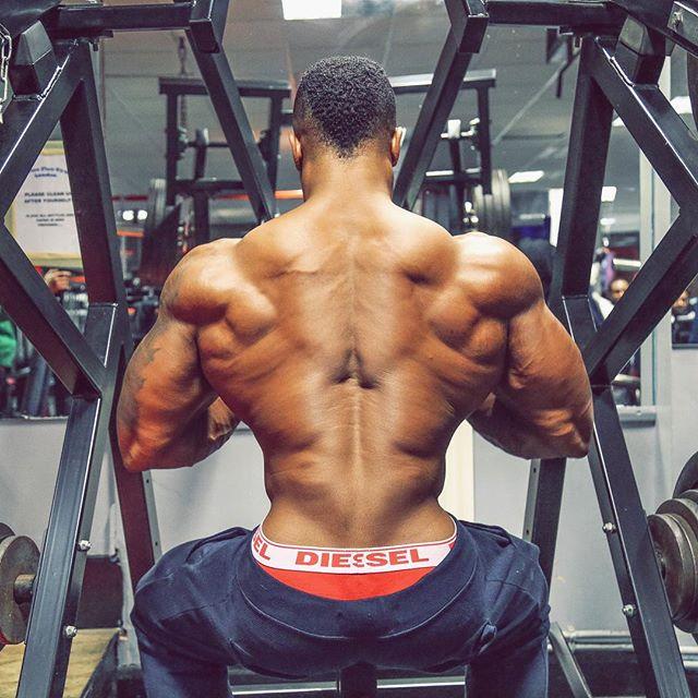 Мышцы спины: особенности тренировки.