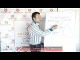 Урок №25: Пирамида сайта. Видеокурс