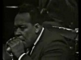 Muddy Waters &amp James Cotton- Got My Mojo Working 1966