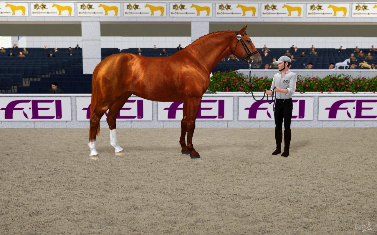 Регистрация лошадей в RHF 2 - Страница 38 J6BnF34rMu8