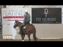 Smooth N Cash ridden by Jake D. Gorrell - 2016 NRCHA Derby (Cow Work - Bridle Spec, Open)