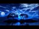 Emil Gilels - Beethoven - Piano Sonata No 21 in C major, Op 53, Waldstein