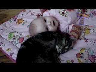 Кошки лучшие сиделки и няньки. Милые кошки и дети (сборник)