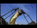 Vidmo_org_rg_SHok_video_Samaya_bolshaya_zmeya_v_Mire_Najjdena_v_2012_godu_ejj_103_goda_12111550__1360906.0