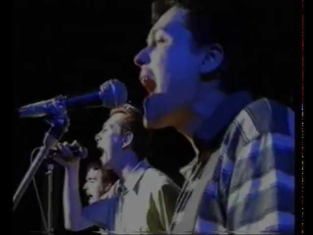 Тараканы! Панк-Рок Песня