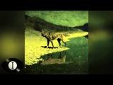 Henry Saiz - Reality Is For Those... Full Album