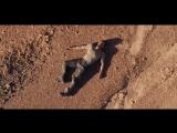 Острие стрелы (2016) Трейлер