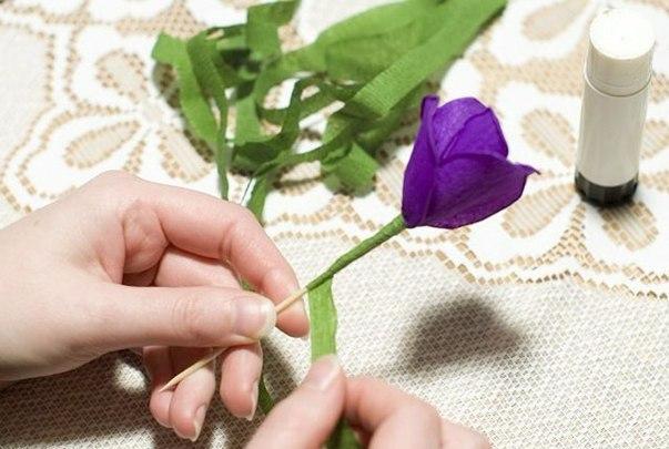 Цветы из гофрированной бумаги своими руками крокус 145