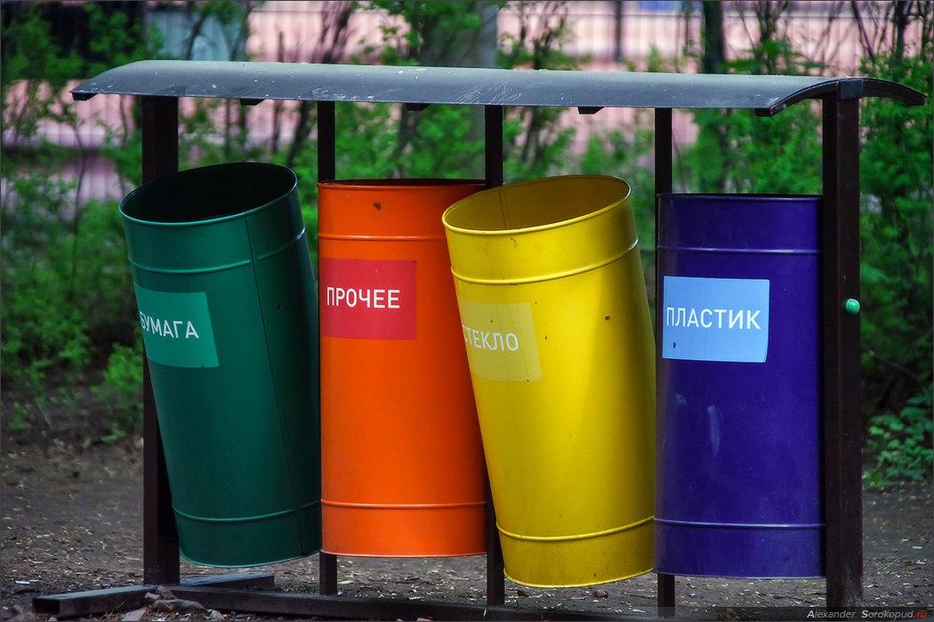 Школьники СВАО приобщатся к экологии в Лианозовском парке