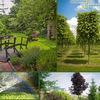 Зеленый Меридиан (Ландшафтный дизайн)