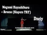 Dzeiy - Megumi Hayashibara Breeze (Slayers TRY) Animatsuri Hanami 2016 (26.03.2016)
