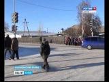 В Алтайском крае полиция проводит уроки по ПДД на уличных перекрёстках