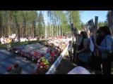 митинг на Братской могиле 09.05.16
