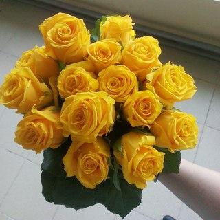 Купить дешево цветы в рязани дешево