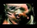 Mike Tyson Flow/ American Dream- Lil Wayne