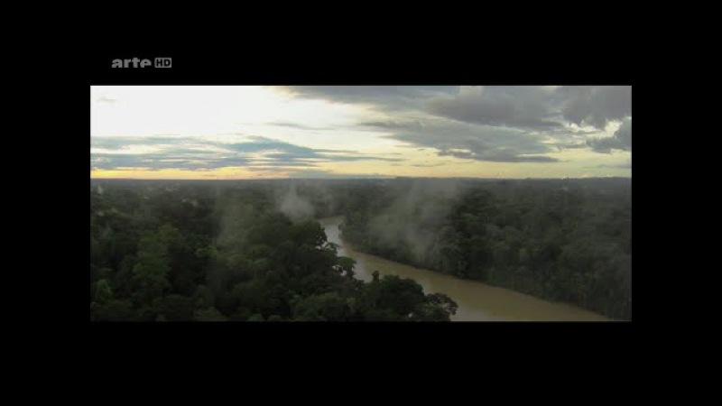 Les forets inexplorees de l'Amazonie peruvienne - Documentaire Arte - 15.09.2016