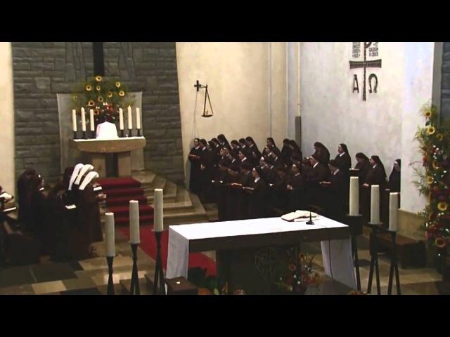 Kościół św Marcina - Warszawa Siostry Franciszkanki Służebnic Krzyża