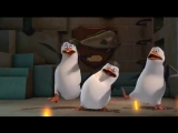 Pingwiny z Madagaskaru - Królem być