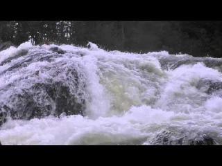 Река Колвица. Водопад Чёрный падун.