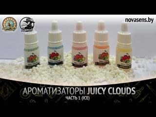 Обзор ароматизаторов Juicy Clouds. Часть 1 (ICE)