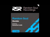 RSR044 - Random Soul - Stumble (RSR Deep Wash)