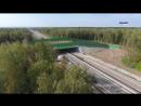 Экодук в Калужской области