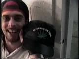 Pantera wants you to smoke weed