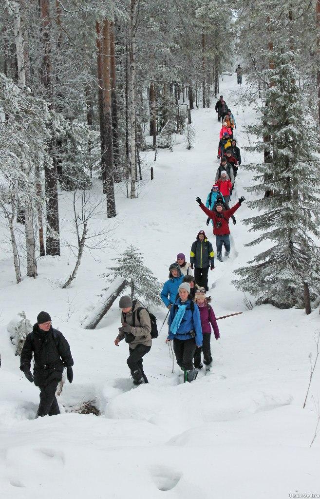 Путь по лесу