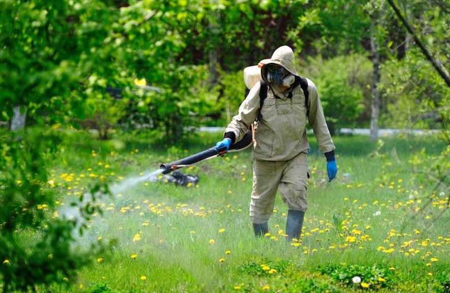 В Ростовской области ветврачи обработали против насекомых более 3,8 миллионов животных